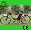 رجال يهذّبون بسيطة [250و] درّاجة كهربائيّة