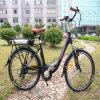 2017 China de buena actuación en la bicicleta eléctrica (RSEB-203)