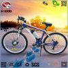 250W 리튬 건전지 판매를 위한 전기 자전거 LCD 디스플레이 페달 MTB 자전거