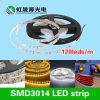 Luminoso e qualità della striscia 3014 flessibili del LED alto