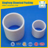 Pp, PE, Rpp, pvc, CPVC, Ring PVDF Plastic Raschig