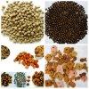 Maquinaria da extrusora do alimento do animal de estimação/cão/gato/peixes (DSE85)