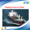 Envío Service From Shangai China a Dubai/a Jebel Ali de Sea Freight