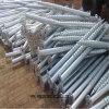 Vite a terra capa svasata Asia@Wanyoumaterial dell'acciaio inossidabile. COM
