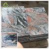 Mattonelle di pavimento rosse del granito di multi colore della Cina
