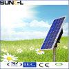 다결정 태양 전지판 (SNM-P40)