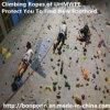 Chemisch PE van de Vezel UHMWPE Koord voor het Beklimmen van Veiligheid