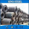 ASTM warm gewalzte Stahlblech-Spule