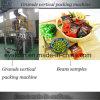 Machine à emballer automatique de casse-croûte d'haricot
