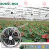 식물성 온실을%s 둥근 유형 천장 배출 냉각팬