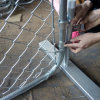 Cheap Galvanized Temporary Fence를 가진 ISO Factory