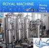 Ro-Wasserbehandlung-Systems-Reinigungsapparat/Wasserpflanze