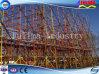 Andamio de la estructura de acero de alto grado con el fabricante profesional (SSW-SF-004)