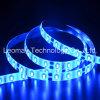 Superstreifen-Licht-Installationssatz-Blau-Farbe der helligkeits-SMD5630 12VDC LED