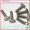 Boulon principal carré DIN261 de la plaque T de zinc