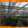 Auto 환경 Control System를 가진 높은 Light Transmittance Glass Greenhouse