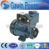 최신 판매 깨끗한 물 펌프 (DGP)