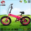 250W販売のための電気スクーターEn15194を折る脂肪質のタイヤのEバイク