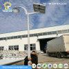 indicatore luminoso solare del giardino di 4m Palo 9W-30W LED
