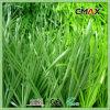 Kunstmatig Gras met het Gezamenlijke Goedkope Gras van de Band