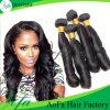 卸し売り加工されていないバージンのRemyの毛のばねの巻き毛の人間の毛髪のよこ糸