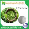 Polvere naturale pura L-Theanine 98% dell'estratto del tè verde di alta qualità di 100%