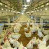 自動繁殖動物制御小屋装置