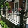 Ferro Gates, Iron Fence e Ferro saldato Fence
