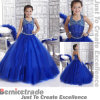 Голубые мантии шарика платья девушки цветка венчания