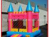 Castillo inflable del parque temático de la alta calidad