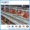 Gaiola estável da galinha do pássaro da grelha das aves domésticas da fábrica direta para vendas por atacado