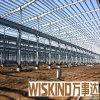 Estructura confiable hermosa del metal de Wiskind (WSDSS312)