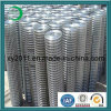 HighqualityのHot-Galvanized Welded Wire Mesh