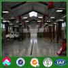 Design portatif Steel Frame Buildings pour Steel Framing