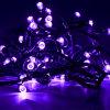 حارّ! [لد] عيد ميلاد المسيح بثرة خيم ضوء