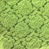 Fabbricato elastico del merletto del Crochet di modo di Thich
