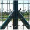 Euro lavorazione di plastica della barriera di sicurezza