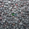 100% IQF Blueberries mit FDA Standard