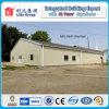 Светлое Steel Structure для Workshop