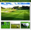 ゴルフ20年は保証の守備につく人工的な草(GS-364)の