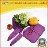 Faca da qualidade superior 3PCS ajustada com Kitchenware da placa de estaca (RYST031C)