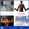 CAS: 77591-33-4 Tb 500 Thymosin Beta-4 Tb500 пептидов
