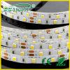 120LED/M W+Ww SMD3528 Flexible LED Strip met CE&RoHS