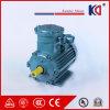 Fase Yb3 AC ex-Proof Electrical Motor met High Speed