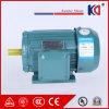 Asynchrone AC van het Aluminium van de gietvorm Motor met Hoge Efficiency