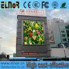 INMERSIÓN caliente 10m m LED a todo color al aire libre que hace publicidad de la pantalla de visualización