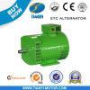 Generador trifásico 20kw del dínamo de la STC pequeño