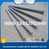 Clou galvanisé de haute résistance de béton en acier à vendre