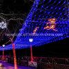 La grande rete personalizzata LED illumina le decorazioni commerciali di natale