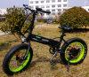 Vélo électrique de mini pliage approuvé de la CE avec la batterie cachée